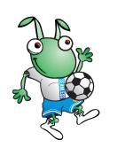 soccer_bugsley